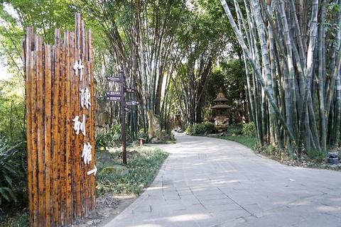 望江楼公园旅游景点攻略图