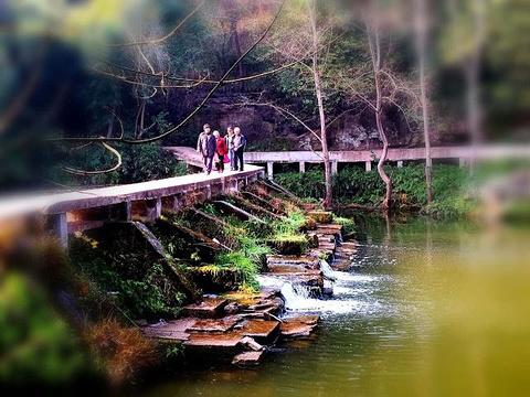 天龙顶国家山地公园
