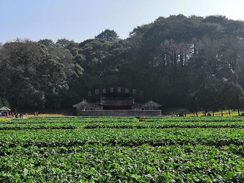 古田会议旧址旅游景点图片
