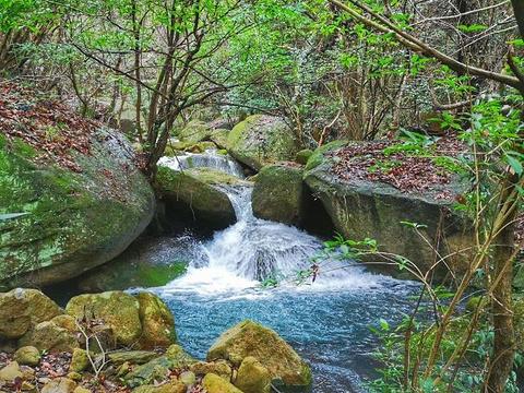 桃花岛风景区旅游景点图片