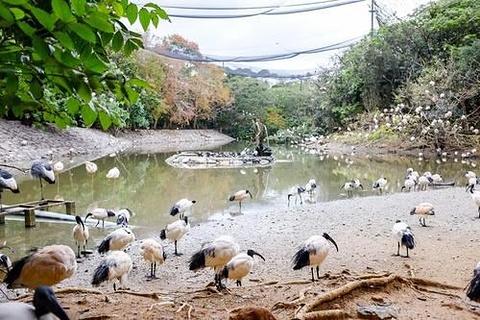 名护自然动植物园