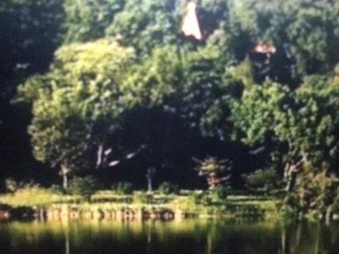 大夫山森林公园旅游景点图片