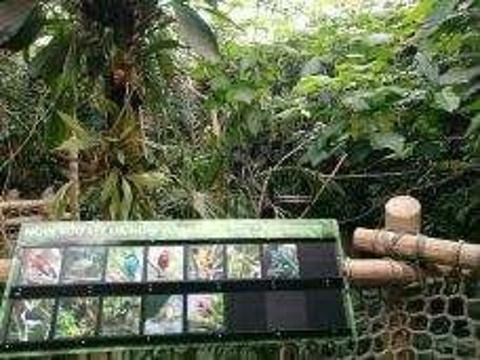 林地公园动物园旅游景点攻略图