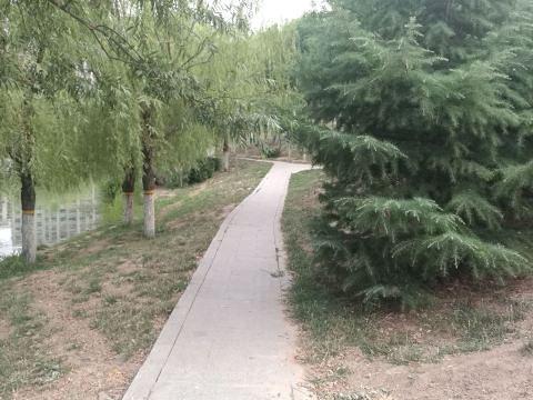 百脉泉公园旅游景点图片