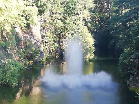 布查特花园旅游景点图片