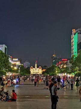 胡志明市金融塔的图片