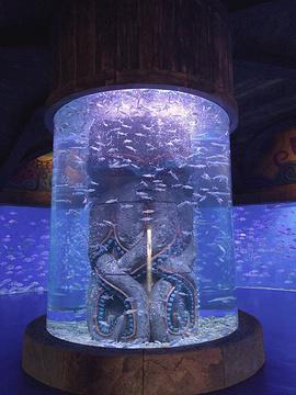 波塞冬海底世界旅游景点攻略图