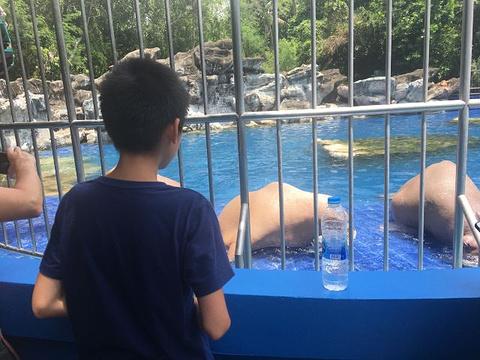 林地公园动物园旅游景点图片